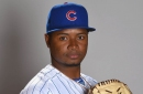 Cubs roster move: Randy Rosario recalled from Iowa, David Bote optioned