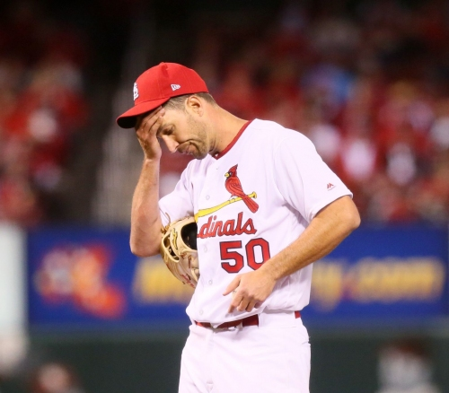 Cards notebook: Wait and see approach for Waino