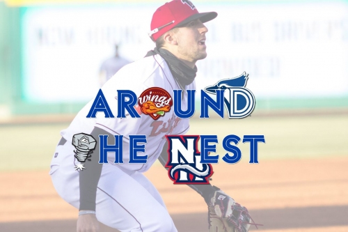 Around The Nest - Blue Jays Minor League Podcast - Week 6
