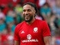 Ashley Williams suffers collapsed lung