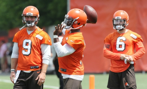 Drew Stanton learned quickly how to make himself useful in the NFL and he'll play a vital role in Browns' quarterback room