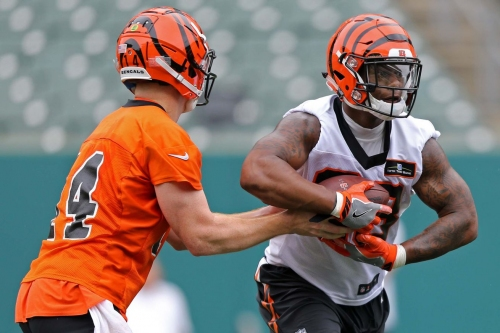"""Joe Mixon's role """"will be expanded""""; Bengals want him to be a """"complete back"""""""