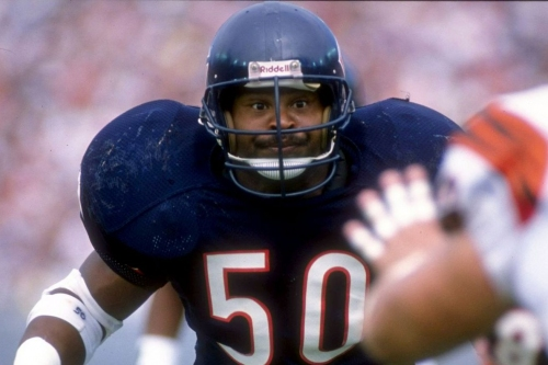 My Bears Historical Fantasy Team is the Best: Get to know the Jaywalkers