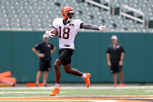 A.J. Green wants to reach the century mark in TDs with the Bengals