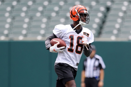Bengals Bytes (6/17): Who will get the redzone targets?