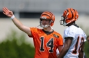 The top 10 Bengals in Madden 19 will likely surprise you