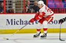 Detroit Red Wings Re-Sign Forward Anthony Mantha