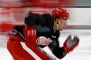 Red Wings prospect Kasper Kotkansalo mobile, physical defenseman - MLive