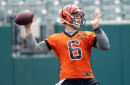 Jeff Driskel will try to win the Bengals' backup QB role, but can he?