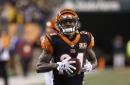 Is Adam Jones still an option for the Bengals?