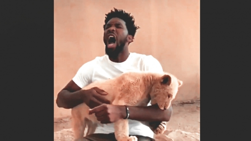 Sixers' Joel Embiid gets bitten by lion cub in South African park