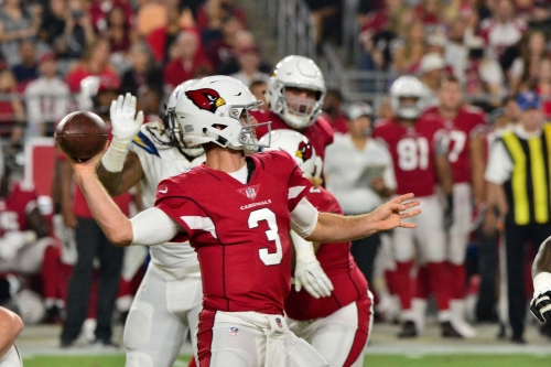 Twitter reacts to the Arizona Cardinals' 24-17 win in week 1 of the preseason and Josh Rosen's debut
