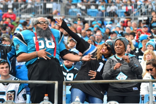 Panthers fans, join Cat Scratch Reader FanPulse