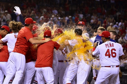Nationals' second walk-off loss in two days leaves Davey Martinez searching for answers...