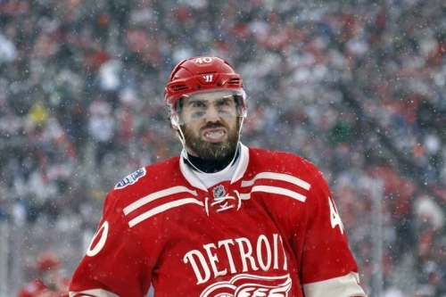 Do we want Detroit Red Wings' Henrik Zetterberg to look like V-Mart?