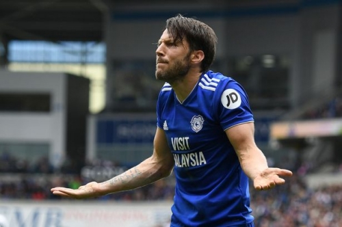 The Cardiff City player ratings against Newcastle United as new boys Harry Arter and Victor Camarasa impress