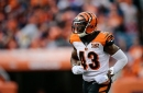 Bengals shockingly release starting safety George Iloka