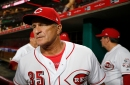 Paul Daugherty: For Cincinnati Reds Interim Manager Jim Riggleman, it's wins vs. development