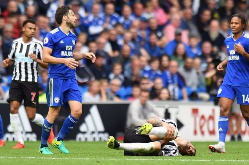 Newcastle United star in social media jibe at Cardiff City's Harry Arter after contentious tackle