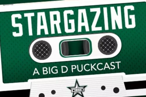 Stargazing Episode #73: The Goaltending Question