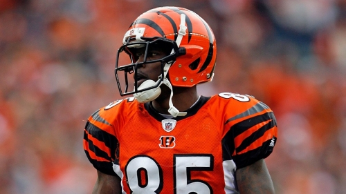 Eagles news: Chad Johnson offers to sign with the Eagles for free WiFi