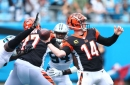 Bengals fans react to the big problems that led to Cincinnati's loss to the Panthers