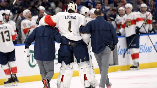 Panthers goalie Luongo out 2-4 weeks with knee injury