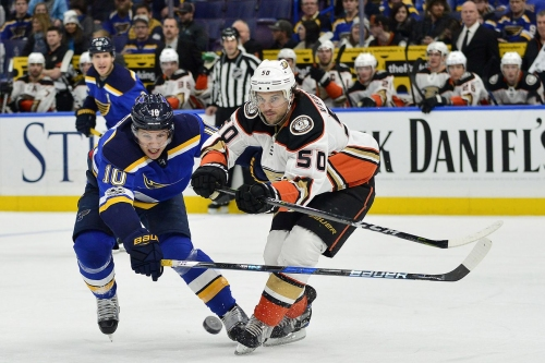 Ducks at Blues GameDay Thread: Blues need to right last night's wrongs