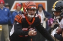 Bengals LB Nick Vigil to miss extended time due to MCL injury