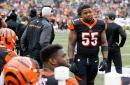 Report: No suspension expected for Cincinnati Bengals' Vontaze Burfict