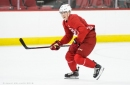 Hurricanes Assign Martin Necas and Haydn Fleury to Checkers, Recall Clark Bishop