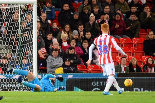 Stoke City player ratings: Sevens all around but one Potters stood out above the rest