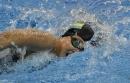 Texas swimming teams top Aggies in dual meet