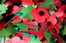 KMR Cars sack driver for 'refusing to transport poppies' to Villa Park for Remembrance Day match