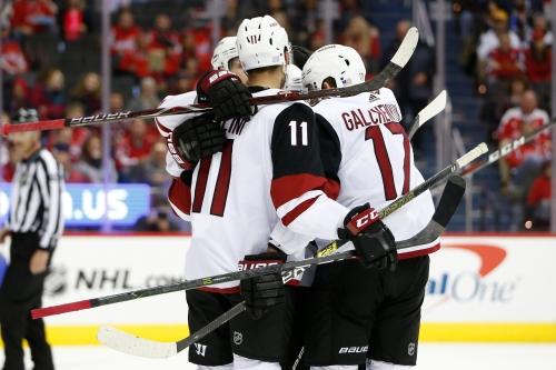 Coyotes flex muscle on man advantage, roll past Capitals