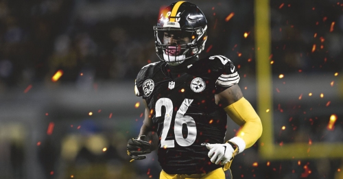 Steelers fan burns Le'Veon Bell jersey