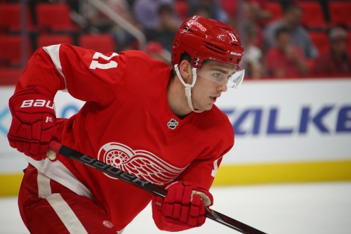 Detroit Red Wings' Filip Zadina could be NHLer in 'a month' or '2 years'