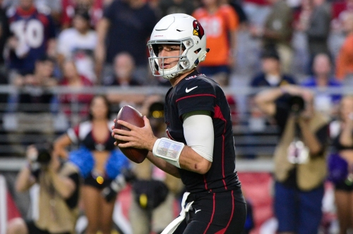 A quick look at Josh Rosen and the Arizona Cardinals
