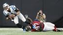 A quick look at the Carolina Panthers