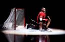 Ottawa Senators Craig Anderson and Justin Falk Out with Concussions