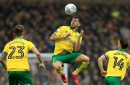 Swansea City's interest in Norwich City's Nelson Oliveira explored and what it means for Wilfried Bony's future