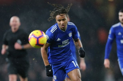Cardiff City's two best players and how Neil Warnock finally solved the Bobby Reid conundrum