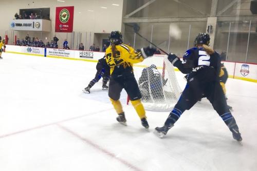 Team Szabados Wins the 2019 NWHL All Star Game