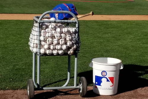 Spring training is about to begin, and the Cubs' Opening Day roster is nearly set
