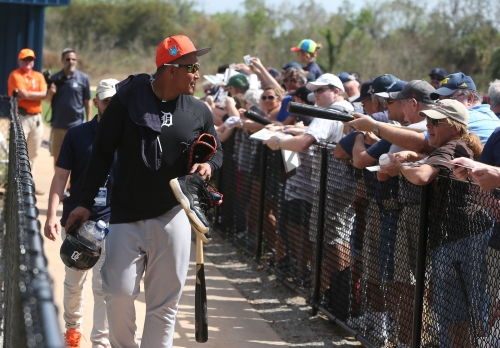 Detroit Tigers spring training: Everything you need to know