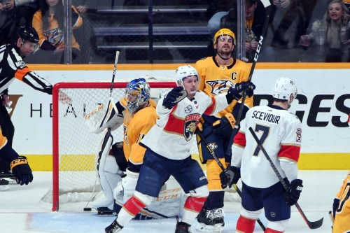 Is it Right to Worry About the Predators?