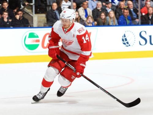 Detroit Red Wings NHL Trade Deadline Brings Uncertainty