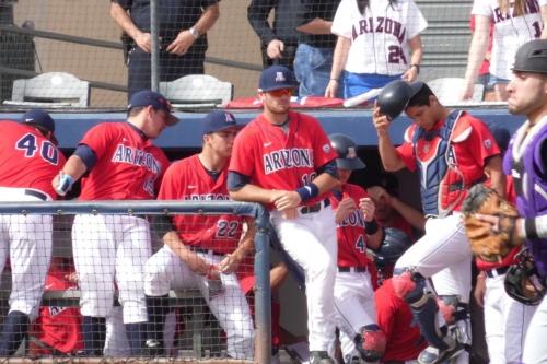 Previewing the 2019 Arizona baseball season