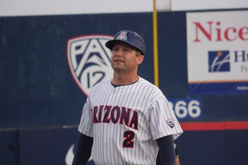 Newcomers abound on Arizona baseball roster