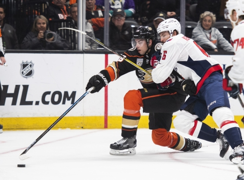 Ducks rise up to defeat defending Stanley Cup champion Capitals